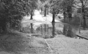 foto1a